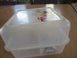 This is my packed lunch box. I have eaten my lunch.