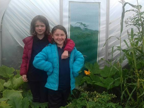 Polytunnel tour 2